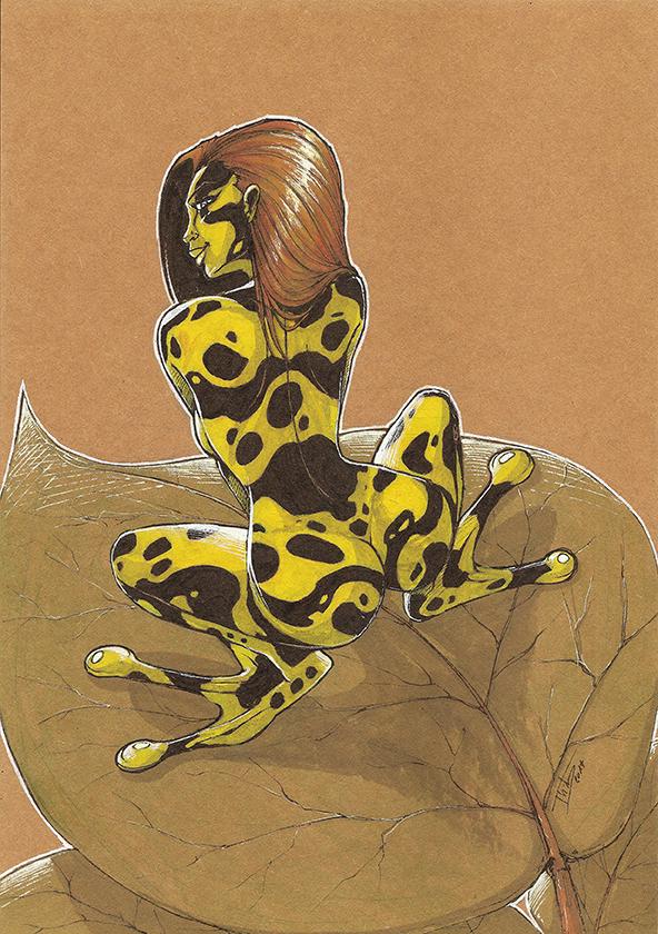 Artbook Femmes animales
